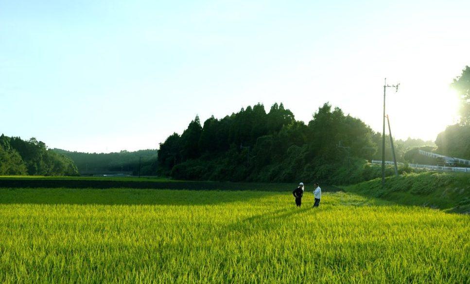 5/29(水)浜町サービスパス所有者限定月末交流会 [熊本]