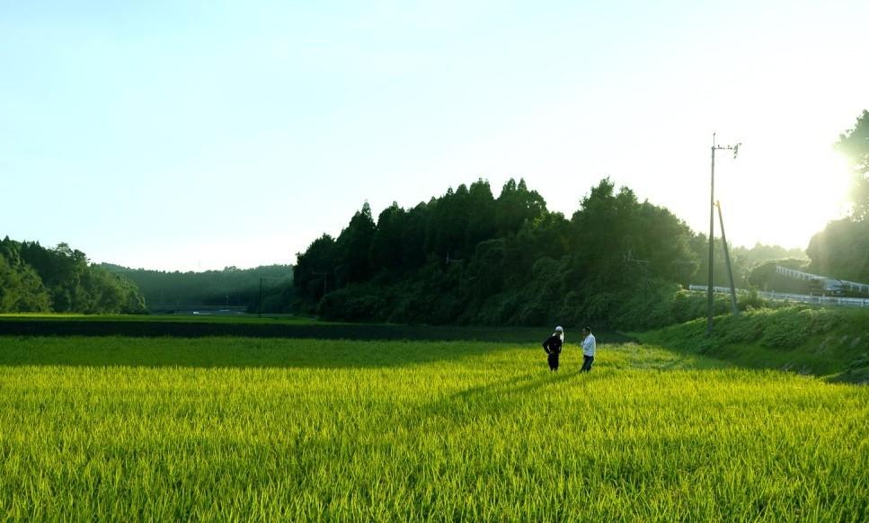 月末交流会 テーマは[熊本]  2019年5月29日(水)
